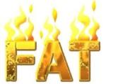 Turn into a fat burningmachine
